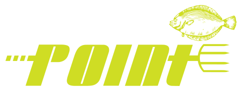 Straight To The Point Guide Service | Flounder Giggin Logo